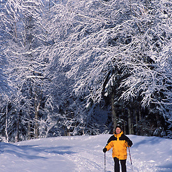 Cross-country skiing on an unplowed road near Second Connecticut Lake.  Northern Forest.  Pittsburg, NH
