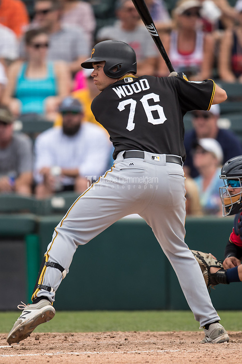 FORT MYERS, FL- MARCH 01: Eric Wood #76 of the Pittsburgh Pirates bats against the Minnesota Twins on March 1, 2017 at the CenturyLink Sports Complex in Fort Myers, Florida. (Photo by Brace Hemmelgarn) *** Local Caption *** Eric Wood