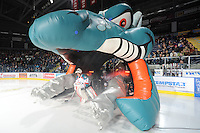 KELOWNA, CANADA, FEBRUARY 17:  Adam Brown #1 of the Kelowna Rockets enters the ice against the Calgary Hitmen at the Kelowna Rockets on February 17, 2012 at Prospera Place in Kelowna, British Columbia, Canada (Photo by Marissa Baecker/Shoot the Breeze) *** Local Caption ***