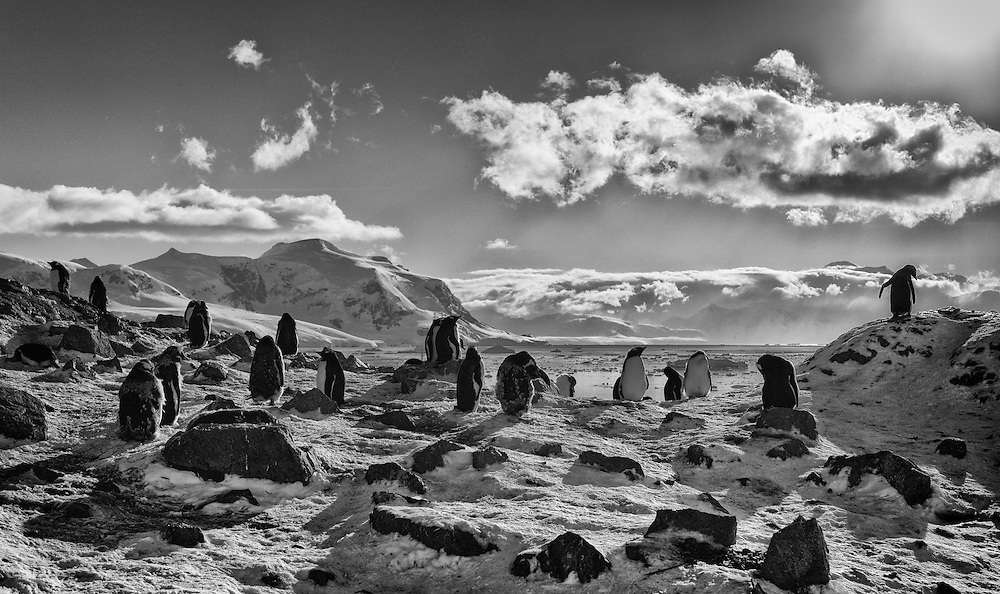 Before visiting the white continent I thought I had already seen truly impressive landscapes in many places around the world, and I was simply expecting Antarctica to be a step ahead of most of them.<br />