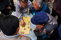 Chine, Province du Yunnan, Kunming, joueurs d'echec chinois et buveur de thé dans le parc du lac d'émeraude // China, Yunnan, Kunming, chinese chess players and tea drinker in the green lake park