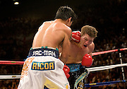 Manny Pacquiao connects with a left hook to the chin of IBO light welterweight Ricky Hatton (45-2, 32 KOs) and knocks him out on Saturday night at the MGM Grand Garden Arena in Las Vegas. Hatton came out aggressively but was dropped by twice by Pacquiao in round one. In round two, Pacquiao dropped Hatton for the count with a left to the chin. Time was 2:59. Hatton was down for several minutes..
