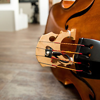 View of the strings of a double bass on the ground