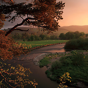 Late evening summer light shining over the River Tweed by Innerleithen in the Scottish Borders.