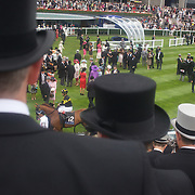 Keen interest on the horses in the parade ring during the race meeting at Royal Ascot Race Course. Royal Ascot is one of the most famous race meetings in the world, frequented by Royalty and punters from the high end of society to the normal everyday working class. Royal Ascot 2009, Ascot, UK, on Thursday, June 18, 2009. Photo Tim Clayton.