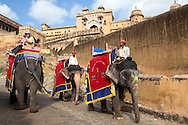 Elephant rides are part of the fun of visiting Amer Fort.  Often spelled Amber Fort, the complex  is famous for incorporating Hindu architectural elements into its overall design.  An opulent palace complex inside is built of sandstone and marble. The palace was once lived in by the Rajput Maharajas.