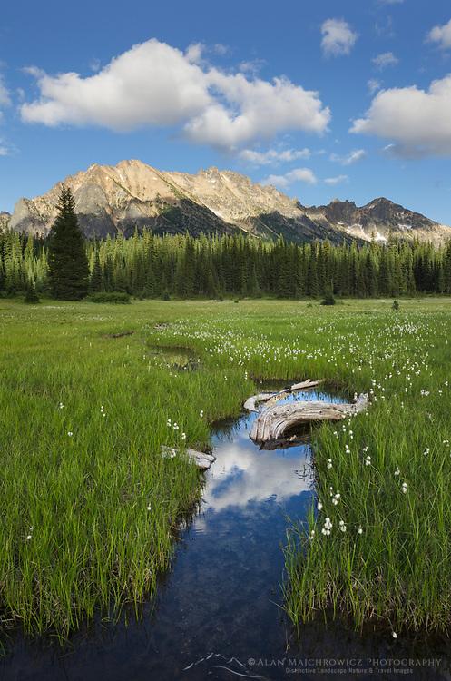 Kangaroo Ridge, reflected in waters of State Creek in Washington Pass Meadows, North Cascades Washington