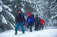 A group of mountaineers as seen walking in snow in the forests above the city of Cormayeur, Italy.