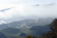 A view into the hills near Mt. Toro from the Portola exit on Highway 68 on Thursday, March 14.