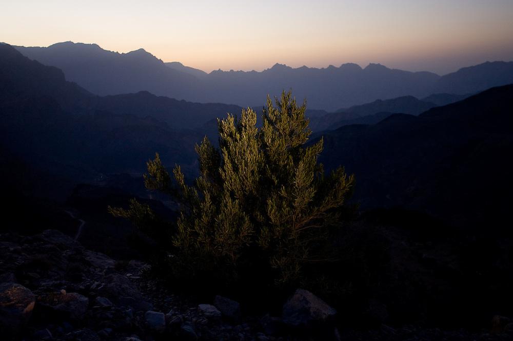 OMAN Sultanat; Arabische Halbinsel, Golf von Oman; Tourismus; Sonnenuntergang in den Bergen; Wadi Danyof,SUNSET in the Mountains; 12.03.2008