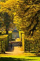 Park (gardens), Pillnitz Castle, Pillnitz, Saxony, Germany