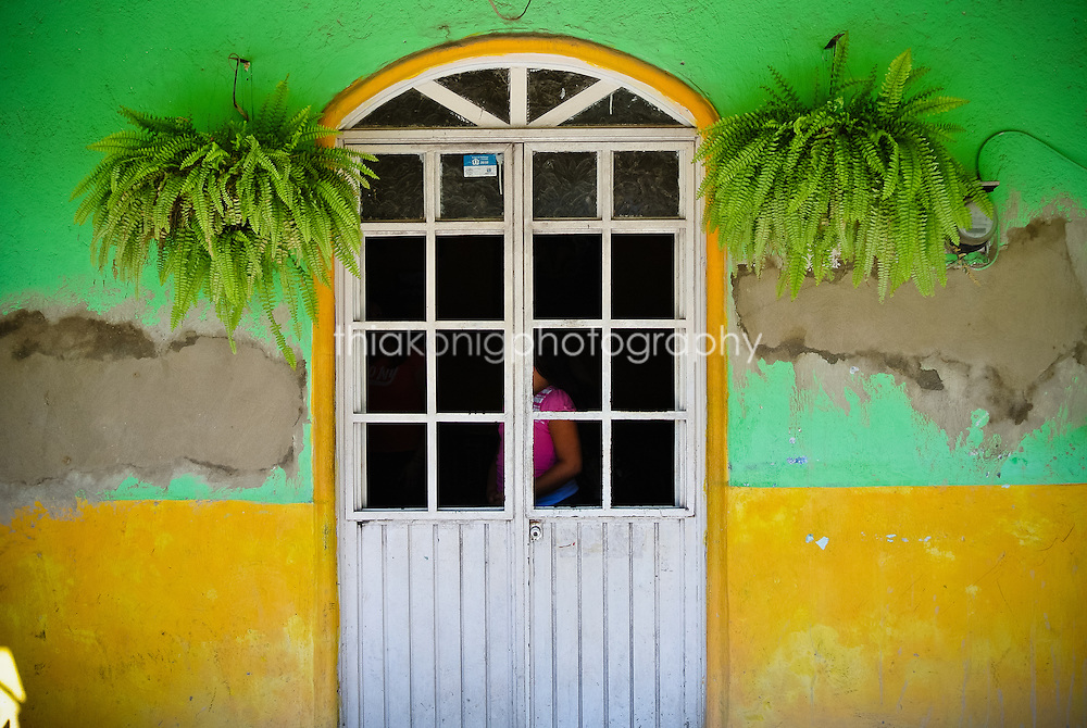Colorful door detail, peeling green and yellow walls, with two ferns hanging symetrically, San Blass, Mexico