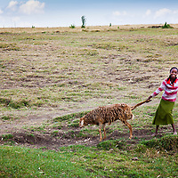 A young girl in rural Ethiopia pulls her goat home from the market in Motta, Ethiopia