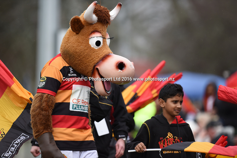 Mooloo during the Ranfurly Shield match - Waikato vs King Country at Bedford Park, Matamata, New Zealand on the 30th July 2016. Photo: Jeremy Ward / www.photosport.nz