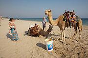 Sealine Beach Resort. Camel riding.