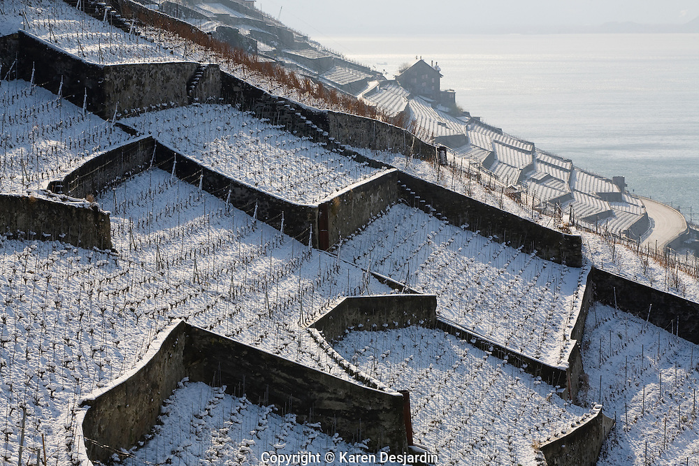 Stone walls form patterns against the snow covered vineyards of the Lavaux wine country of Switzerland. Located on the northern shore of Lake Geneva, the region is a UNESCO World Heritage site. http://www.gettyimages.com/detail/photo/switzerland-canton-of-vaud-lavaux-snow-high-res-stock-photography/sb10069435c-001