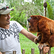 Therany Gonzales plays with Pepe the red howler monkey at Amazon Shelter, an animal rehabilitation center and ecotourism initative along Tambopata Road in Peru. Amazon Shelter is one of the projects supported by Interoceanica SUR (iSUR), an organization that seeks to promote conservation efforts around the new Interoceanic Highway that streteches across Peru and Brazil.