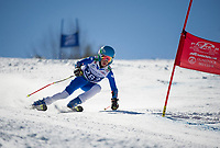 Francis Piche Invitational Giant Slalom U14 boys second run with Gunstock Ski Club.  <br /> ©2017 Karen Bobotas Photographer