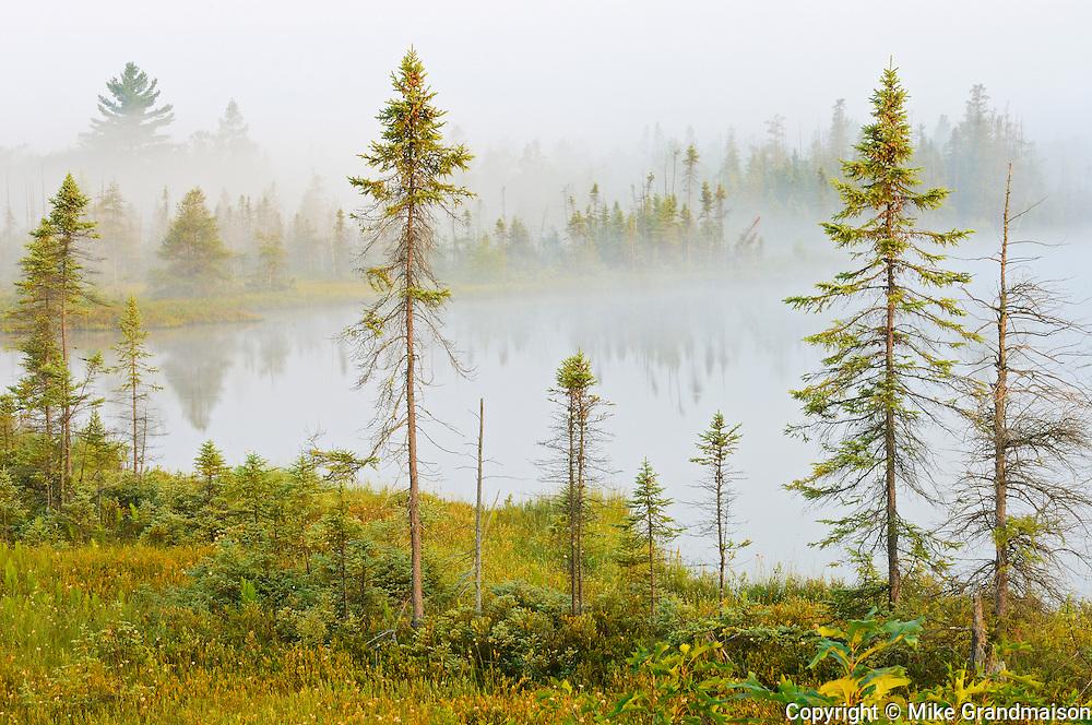 Fog on Highland Pond<br /> Torrance Barrens Dark Sky Preserve<br /> Ontario<br /> Canada