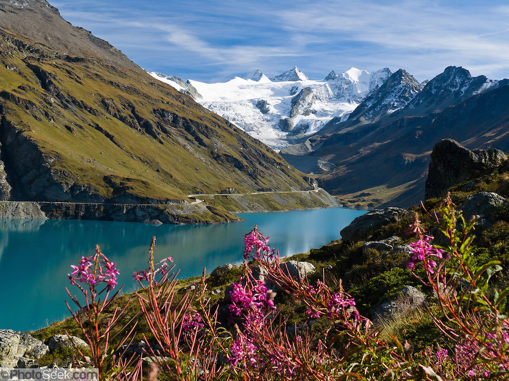 """Dent Blanche (upper right 4356 meters or 14,291 feet, """"White Tooth"""") rises above Lake Moiry and fireweed (Epilobium angustifolium) in Val de Moiry, Valais (Wallis) canton, Switzerland, Pennine Alps, on the High Route (Chamonix-Zermatt Haute Route), Europe. Published in Ryder-Walker Alpine Adventures """"Inn to Inn Alpine Hiking Adventures"""" Catalog 2006 (cover image), 2008, 2011."""