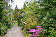 The Arboretum des Grandes Bruyeres, in the Foret d' Orleans, in Ingrannes, Centre, France For more information please visit http://cheeseweb.eu/2015/06/arboretum-des-grandes-bruyeres-ingrannes-france/