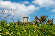 The top of a small chapel covered by plants in sunny day. The chapel is in the private caribbean island of Half moon cay.