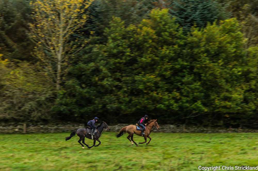 Bonchester Bridge, Hawick, Scottish Borders, UK. 31st October 2015. Point to point racehorces Durban Gold and Oscar Stanley take part in speed work with jockey and trainer Joanna Walton and Di Walton.