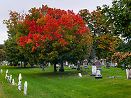 https://Duncan.co/fall-color-at-cemetery