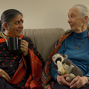 Dr. Vandana Shiva, left, and Dr. Jane Goodall, both are delegates to the International Women's Earth and Climate Summit , talk before the opening of the summit. Leaders from 35+ countries gathered for the drafting of a Women's Climate Action Agenda in Suffern, New York September 20-23rd, 2013 as part of the International Women's Earth and Climate Summit.  For a full list of Summit delegates and an agenda visit www.iweci.org. Photo by Lori Waselchuk/MagazinesOUT!
