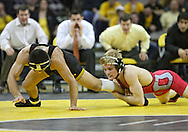 January 22 2010: Iowa's Tony Ramos tries to get away from Ohio State's Ian Paddock during the 133-pound bout an NCAA wrestling dual at Carver-Hawkeye Arena in Iowa City, Iowa on January 22, 2010. Ramos defeated Paddock 5-2 and Iowa defeated Ohio State 33-3..