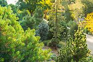 20170830 Summer Gardens