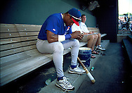 June 27th 1998 Kansas City, MO.Cubs right fielder Sammy Sosa holds an injured bird that was found underneath the bench in the dugout before an interleague game at Kauffman Stadium.. Photo by Chris Machian
