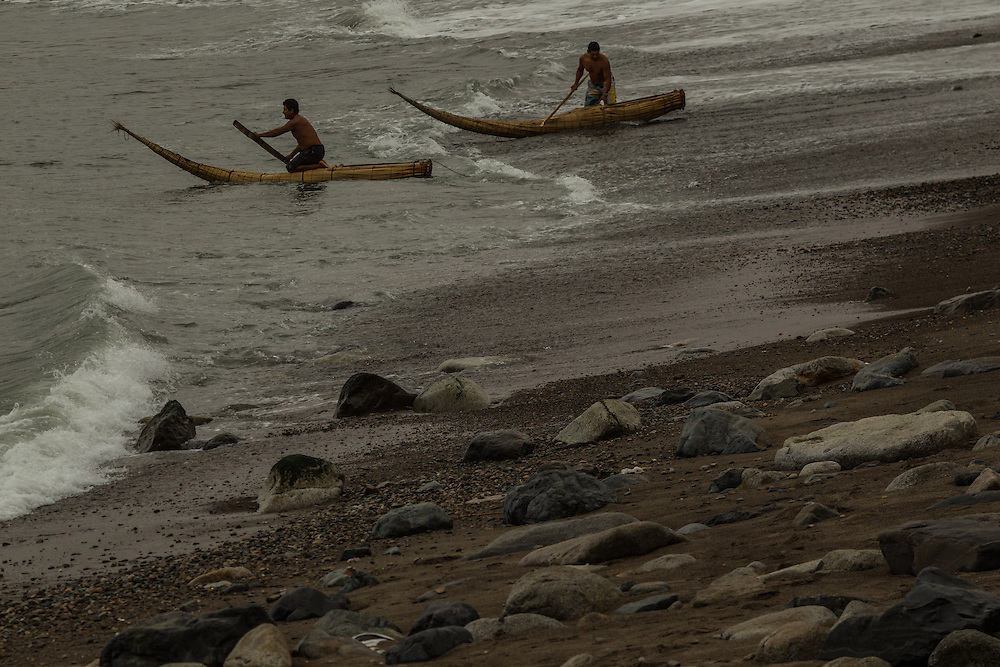 HUANCHACO, PERU - JULY 14, 2014: Fishermen go out to sea in reed boats with pointy, upswept prows known as caballitos de totora, or little totora reed horses. Centuries before the Spanish arrived and long before the Incas extended their empire from the mountaintops to the coast, fishermen here were building boats from the totora reed that grows along the shore. Today a handful of fishermen keep up that tradition, growing and harvesting the reeds and forming them into the boats that have been used by fishermen for thousands of years in Huanchaco. Now this longstanding tradition is threatened. The marshy beds where the reeds are grown are being destroyed as changing ocean currents erode the shorline. And the reserve that protects the reed beds is increasingly hemmed in by houses and real estate speculators as seaside land values rise. PHOTO: Meridith Kohut for The New York Times