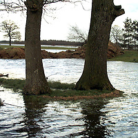 fotografie frank uijlenbroek©2002 simone de jager.020227 beerze ned.door het stijgende water ontstaan hoge water standen in de regio zoals hier bij de marsdijk in beerze