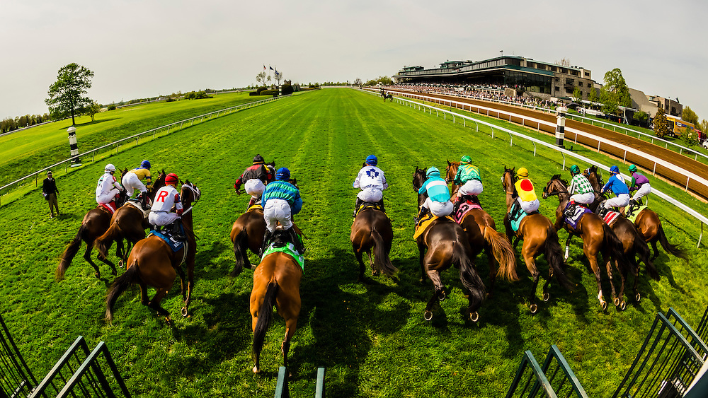 A view of a start of a race from the starting gate on the turf course at Keeneland Racecourse, Lexington, Kentucky USA.