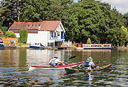 © Licensed to London News Pictures. 17/07/2014. Kingston Upon Thames, UK. Two men canoe along the Thames.  People and animals in the sunny hot weather on the banks of the River Thames at Kingston Upon Thames today 17th July 2014. Photo credit : Stephen Simpson/LNP