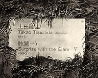 Hakone Open-Air Museum (Hakone Choukoku no Mori Bijutsukan). Image taken with a Leica T Camera and 18-56 mm lens.