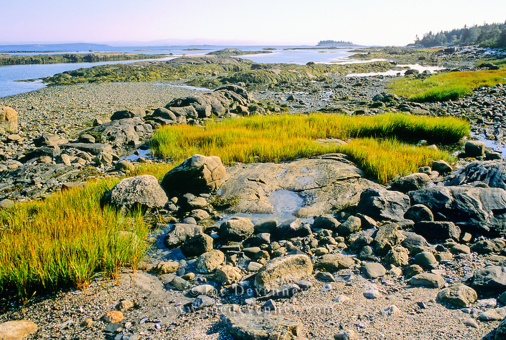 Low tide on Great Wass Island. Maine