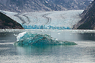 Iceberg with backdrop of Dawes Glacier in Endicott Arm, Inside Passage, Alaska. Southeast. Morning.