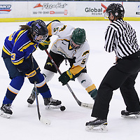 3rd year forward Jaycee Magwood (5) of the Regina Cougars in action during the Women's Hockey home game on February 9 at Co-operators arena. Credit: Arthur Ward/Arthur Images