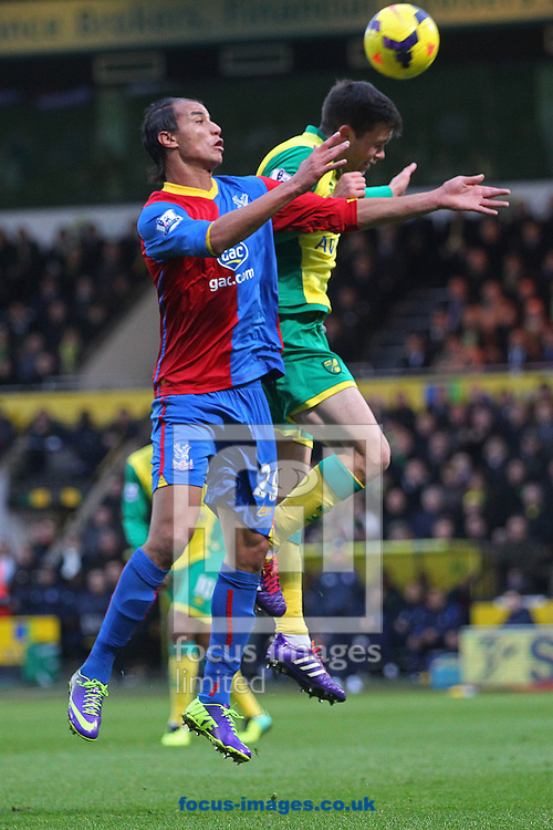 Picture by Paul Chesterton/Focus Images Ltd +44 7904 640267<br /> Jonny Howson of Norwich and Marouane Chamakh of Crystal Palace in action during the Barclays Premier League match at Carrow Road, Norwich.
