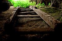 Reportage sul comune di Alessano per il progetto propugliaphoto..Una scala antica in legno giace all'interno di un edificio rurale tipico dell'architettura di questi territori..Macurano è un villaggio rupestre considerato un luogo di scambio e commercio, simbolo della cultura dell'olio per la presenza ad oggi di alcune tracce nelle grotte e di frantoi funzionanti nella zona. L'insediamento è caratterizzato da una serie di grotte sia naturali che scavate nel calcare, cisterne per la raccolta dell'acqua, sistemi di canalizzazione che scendono da Montesardo, viottoli, scalette e vie più larghe con antiche tracce di carri..Si ritiene che in questo sito, un vero e proprio centro abitato ben organizzato distante circa quattro km dalla costa, i monaci basiliani scappati dall'oriente in seguito alla lotta iconoclasta, trovarono rifugio e si dedicarono all'agricoltura..L'area del villaggio rupestre fu sicuramente sfruttata in epoche successive, lo prova l'esistenza di ben tre masserie di cui una fortificata e i resti di una serie di costruzioni che fanno parte dei numerosi esempi di architettura rurale presenti in questo territorio. .Il complesso masserizio, denominato Macurano, edificato probabilmente nel Cinquecento include la Masseria di Santa Lucia e la cappella di Santo Stefano. La Masseria è dominata dal nucleo originario, ovvero dalla torre cinquecentesca coronata da beccatelli a sostegno del parapetto aggettante del terrazzo sommitale.