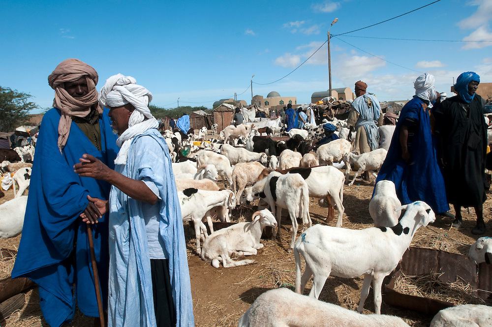 Goat breeders and their animals at the D'El Mina small animal market in the country's capital..Nouakchott, Mauritanie. 14/03/2011..Photo © J.B. Russell