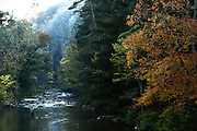 Trees, fall foliage, trees by water, fly fisherman in river
