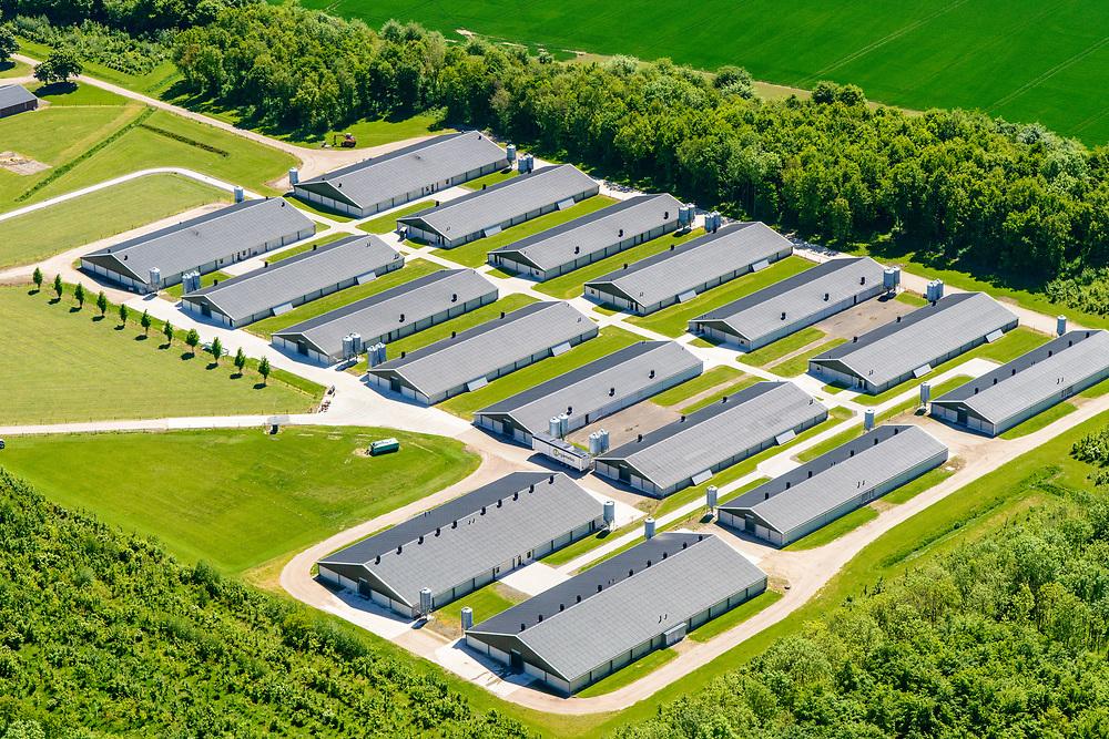 Nederland, Gelderland, Over-Betuwe, 13-05-2019; Herveld, nabij knooppunt Valburg. Grootschalige pluimvee fokkerij van internationaal opererend bedrijf Cobb-Vantress.<br /> Large scale poultry breeding, international company Cobb-Vantress.<br /> <br /> luchtfoto (toeslag op standard tarieven);<br /> aerial photo (additional fee required);<br /> copyright foto/photo Siebe Swart