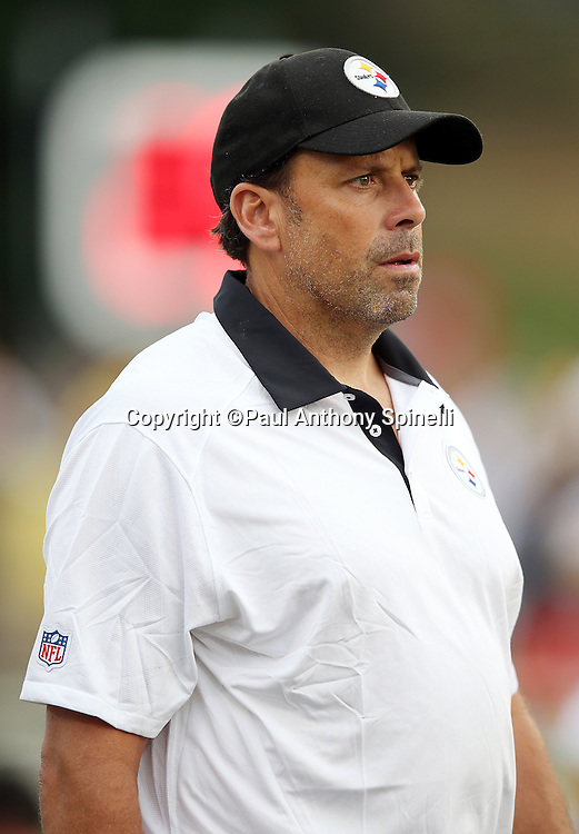 Pittsburgh Steelers offensive coordinator Todd Haley looks on from the sideline during the 2015 NFL Pro Football Hall of Fame preseason football game against the Minnesota Vikings on Sunday, Aug. 9, 2015 in Canton, Ohio. The Vikings won the game 14-3. (©Paul Anthony Spinelli)
