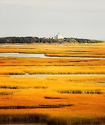 Coast Guard Through the Marsh, Cape Cod