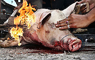 Cat 7 - PICTURE STORY.Paul Kane.Getty Images.The skin of a pig is cleansed after being slaughtered ahead of the Balinese holiday Galungan, which celebrates the victory of dharma (good) over adharma (evil)..