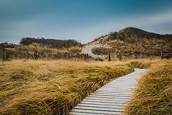 wooden walkway through the dunes in The Hamptons