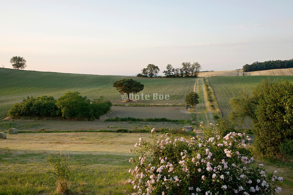 French rural landscape in the Razes area of the languedoc Roussillon Aude France